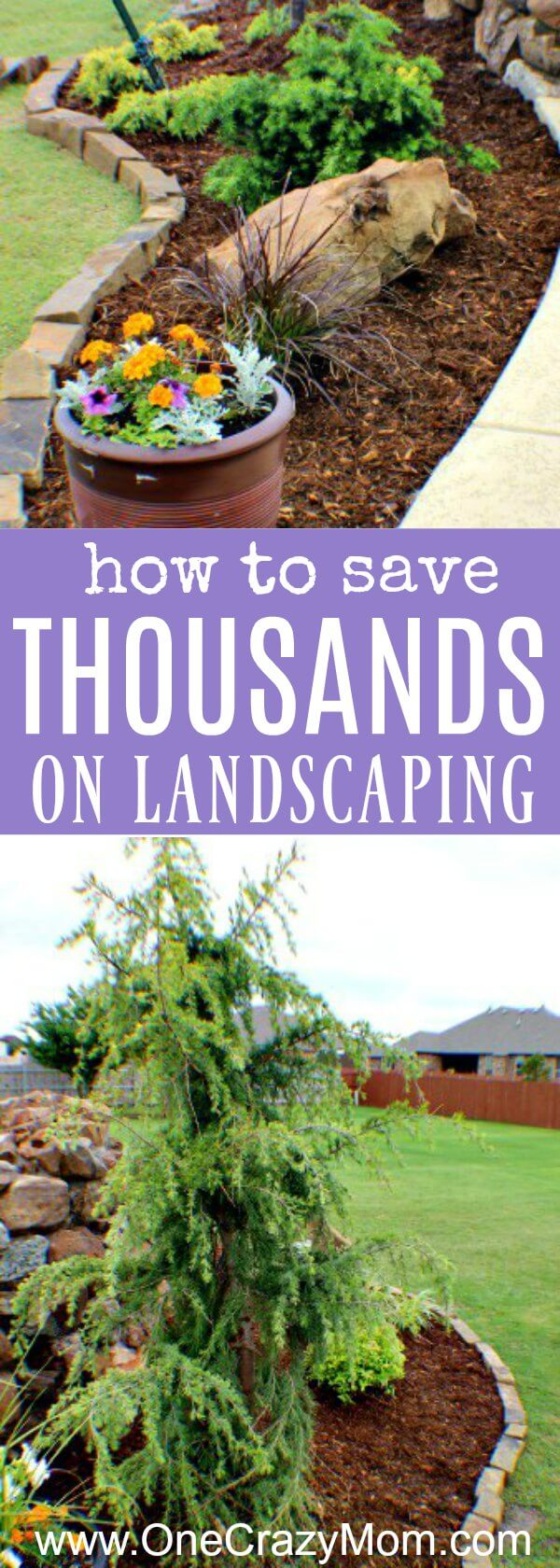 Use these money saving landscaping tips to save big on landscaping. 7 Money saving landscaping tips you will love. Learn how to save money on landscaping. Save thousands of dollars with these money saving tips for landscaping your yard!