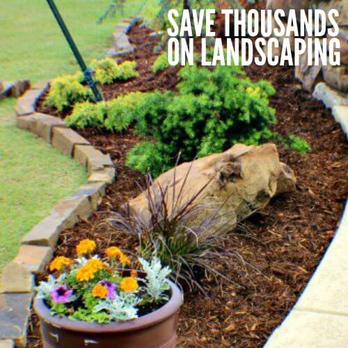 Save on Landscaping – How We Saved Thousands and tips so you can too!