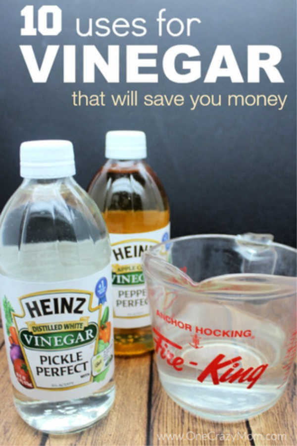 Here are some clever vinegar uses that will actually save you money. These uses for vinegar will cost less than buying expensive specialty products.