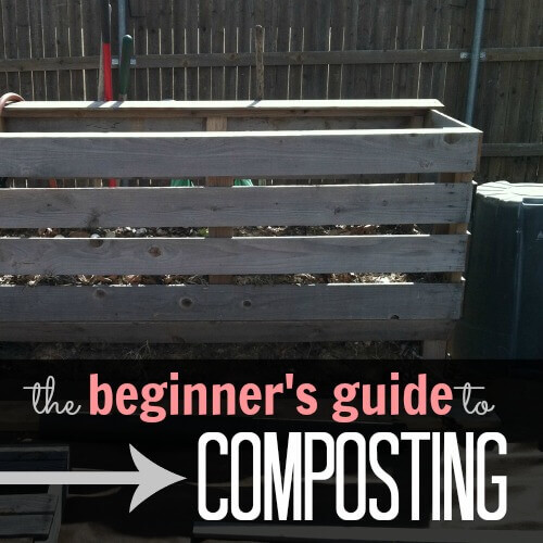 How to Compost (the beginners guide)