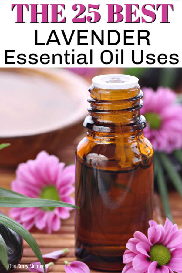 There are numerous Lavender essential oil uses that you need to know. Find 25 of the bestlavender oil uses to use for beauty, home and more.