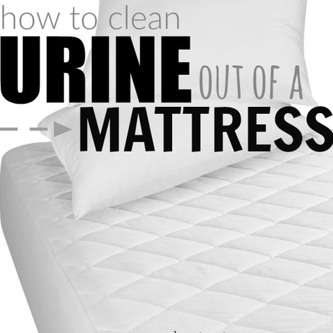 Learn how to get pee out of mattress with just two items. Eliminate the the odor and the stain with something you already have in your pantry! Find out how to get urine out of mattress. How to clean pee from mattress. How to get pee smell out of mattress. How to clean pee out of a mattress.
