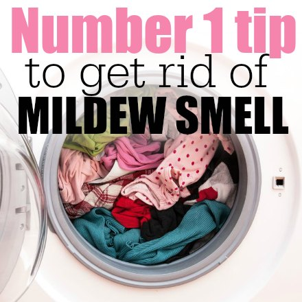 How To Get Rid Of Mildew Smell. You Only Need One Ingredient And You Can