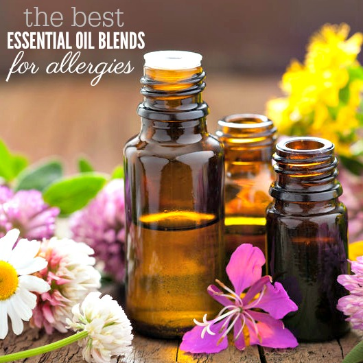 6 Amazing  Essential oils Blends for Allergies
