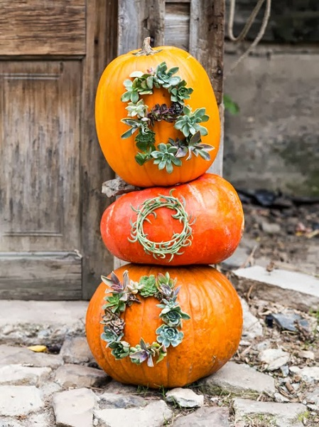 Find 20 no carve pumpkin decorating ideas the entire family can help with. It's so fun to decorate for Fall and what better way than with pumpkins!