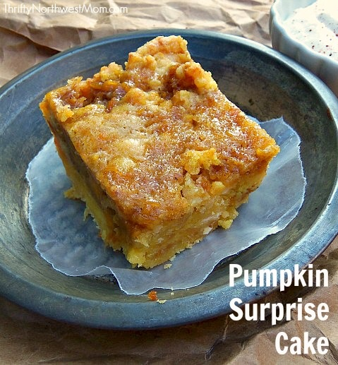 Try these quick and easy pumpkin recipes. It's the time of year we start to think about all things Pumpkin. Get started with these 100 Pumpkin recipes!