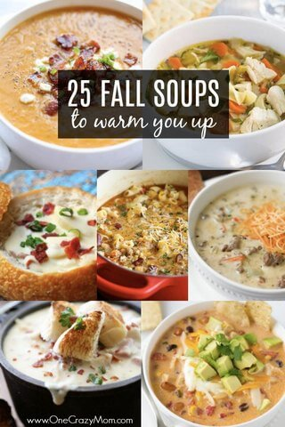 Here are 25 quick and easy fall soup recipes to make when the weather starts cooling down. These Fall Soups are sure to impress the entire family. There is something for everyone.