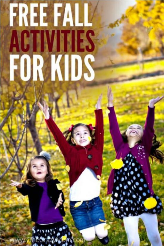 We have 5 fall activities for kids that everyone will love. These activities are free and perfect for the entire family to enjoy this fall.