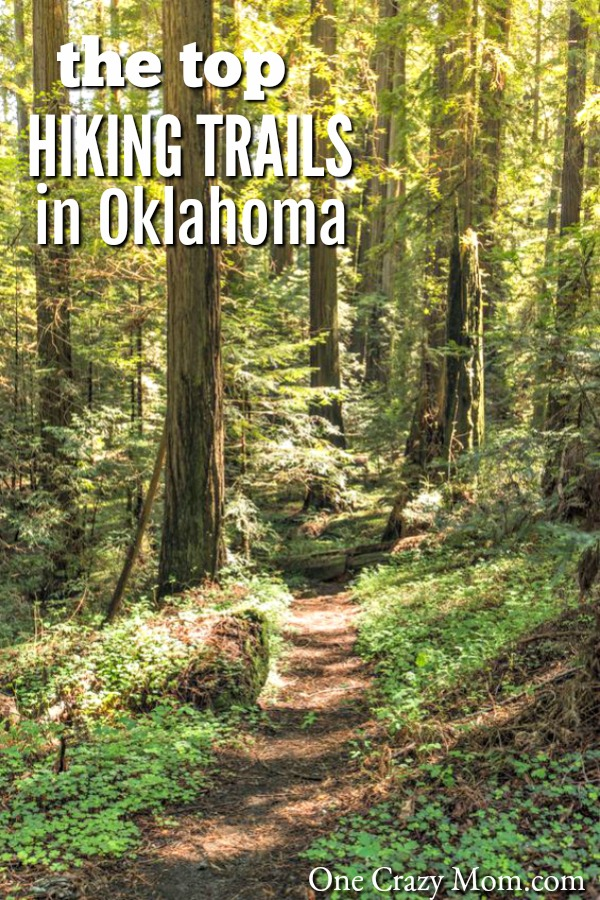 Here are the best Oklahoma Hiking Trails. Have a ton of fun exploring all of the hiking trails available to you! Find the top trails in Oklahoma.