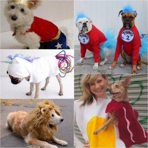 15 Awesome Homemade Dog Costumes for Halloween