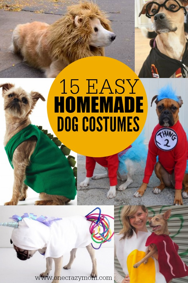 Homemade Dog Costumes 15 Diy
