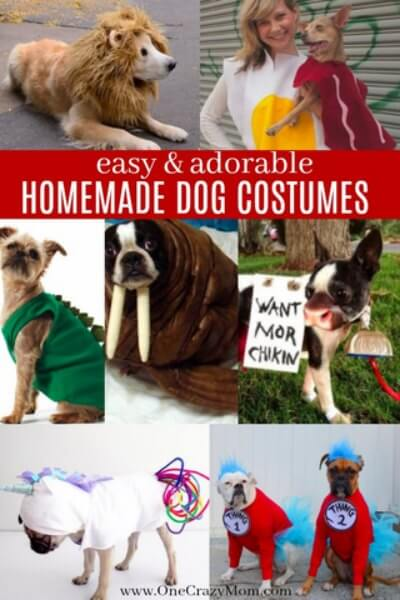 Check out these homemade dog costumes that are so cute! 15 DIY dog costumes that are quick and easy. Your dog will be the hit of the Halloween party!