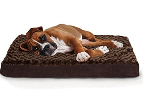 Find the best dog gifts here for your precious pup! We have 20 Dog Gift Ideas! From toys and treats to beds and blankets, there is something for all dogs!
