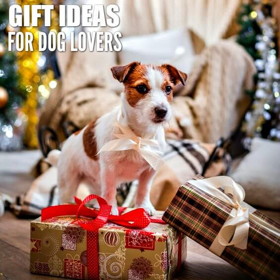25 Gift Ideas for Dog Owners