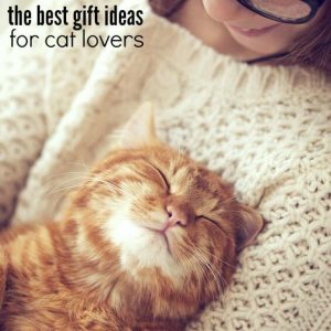 20 Best Gifts for Cat Lovers