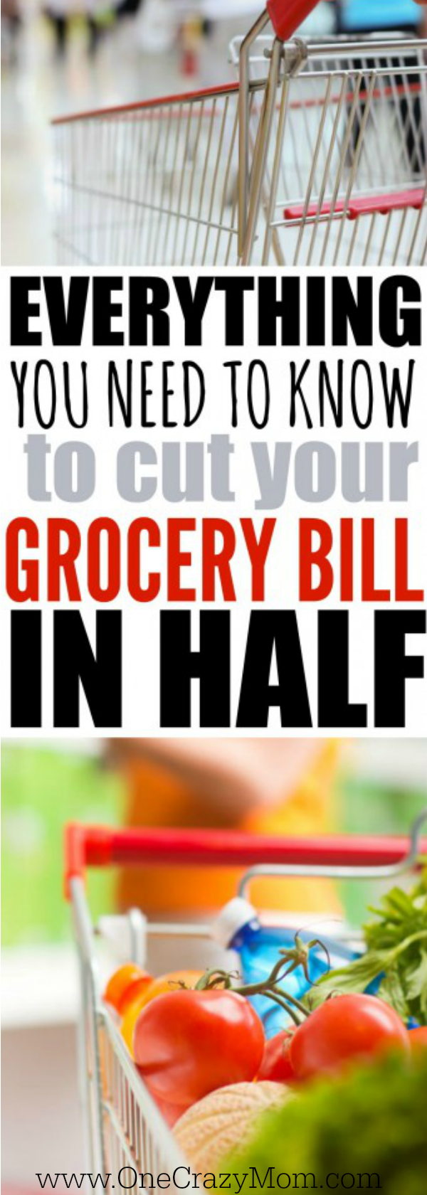 Learn How to save money on groceries by menu planning! These tips will help you save money on groceries by menu planning and using a meal planner. Once you know how to save money on food by meal planning, it is so easy!