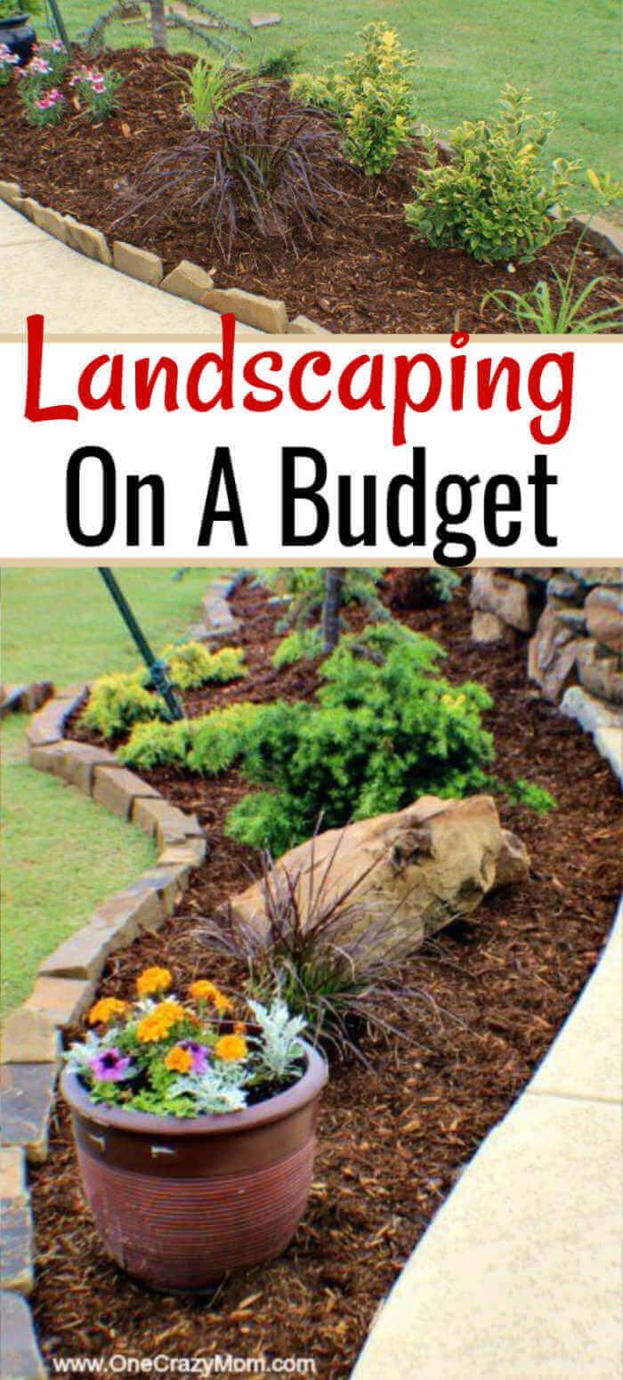 money saving landscaping ideas - 7 money saving landscaping tips