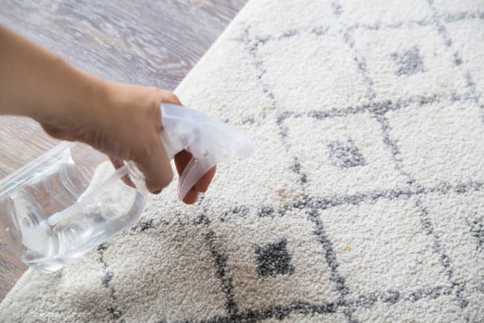 Homemade Carpet Cleaner Best Homemade Carpet Cleaner