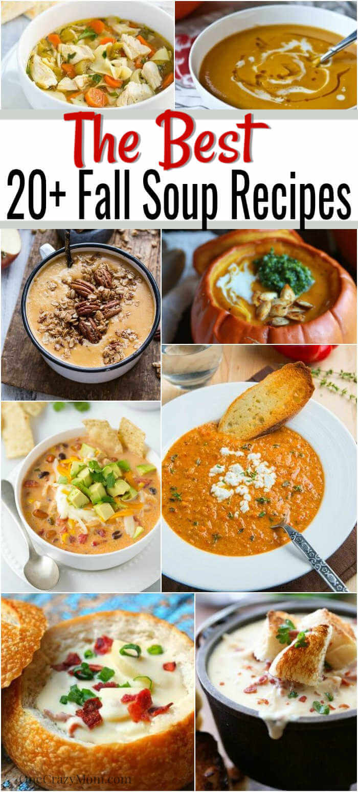 Here are 25 quick and easy fall soup recipes to make when the weather starts cooling down. These Fall Soups are sure to impress the entire family.