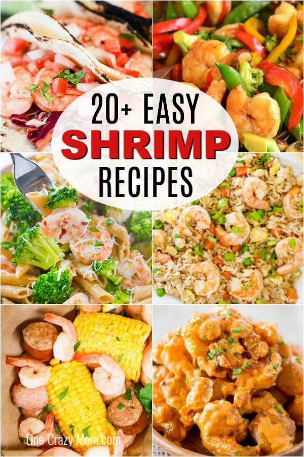 Find 20+ easy shrimp recipes that are super easy to prepare and so tasty. Dinner will be a breeze with these quick and delicious meal ideas for you to try.
